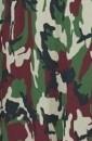 ברצוני צבע צבא +₪400